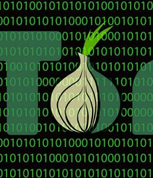 Using TOR: Is it Worth the Risk, or the Time?